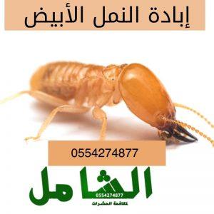 شركة مكافحة النمل الابيض بالدمام