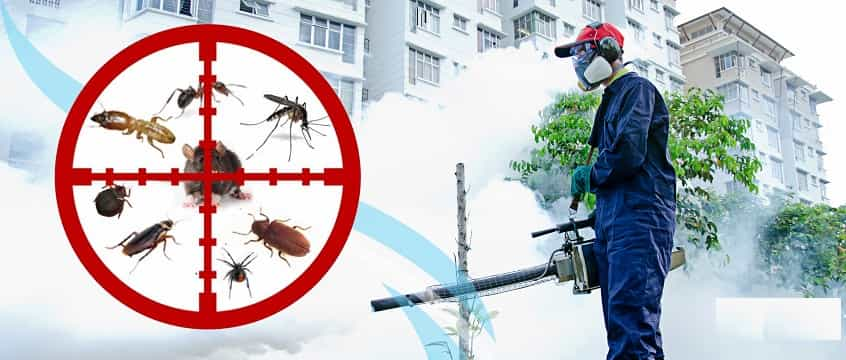 fumigation-services-company-in-ikeja-lagos