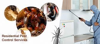 شركه شركه مكافحة حشرات بالدماممكافحة حشرات بالدمام